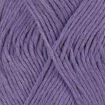 13-violet